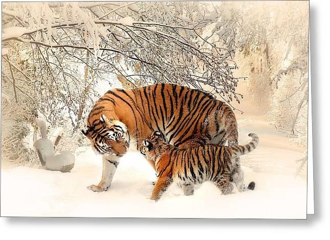 Tiger Family Greeting Card