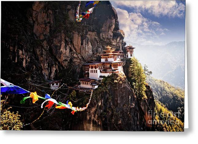 Tigers Nest 2 Greeting Card