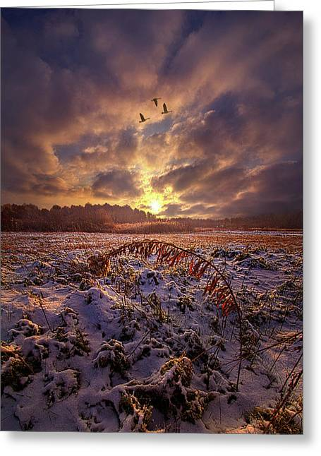 Greeting Card featuring the photograph Times They Changed by Phil Koch