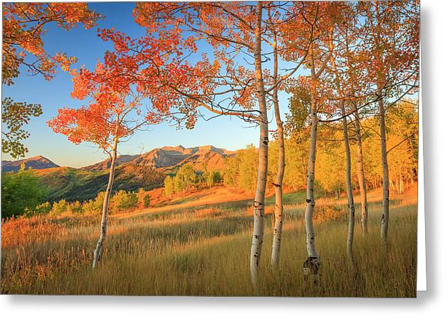 Timp With Fiery Aspens Greeting Card