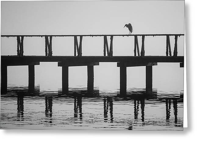 Greeting Card featuring the photograph Tomales Bay Vi Bw by David Gordon