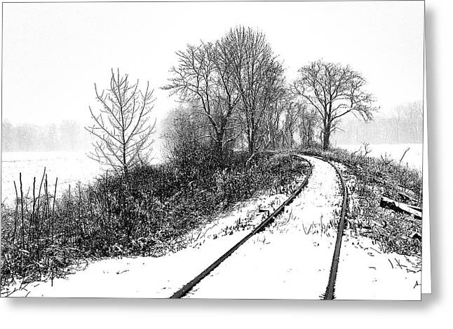 Tracks In Snow Greeting Card