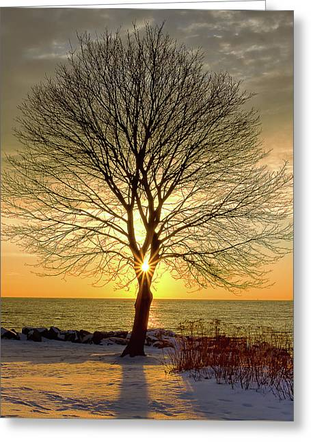 Greeting Card featuring the photograph Tree Framed Sunrise New Hampshire by Nathan Bush