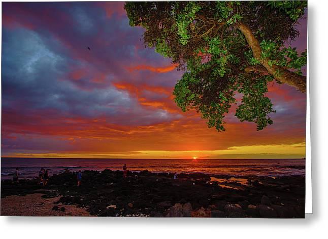 Tree  Sea And Sun Greeting Card