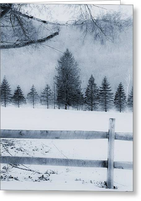 Trees In Frost Valley Greeting Card