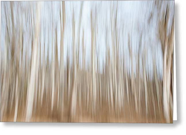 Trees On The Move Greeting Card