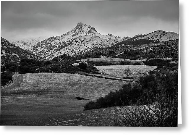 Trevenque Mountain. After The Snowstorm. Sierra Nevada Greeting Card