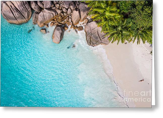 Tropical Beach With Sea And Palm Taken Greeting Card
