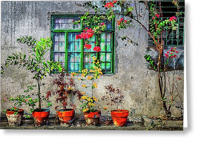 Greeting Card featuring the photograph Tropical Wall by Michael Arend