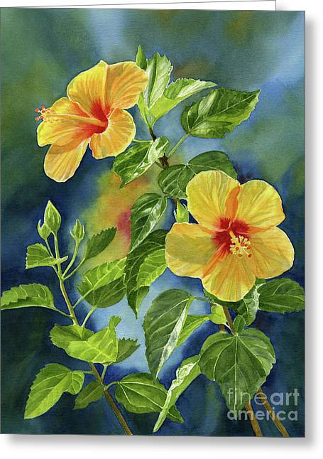 Tropical Yellow Orange Hibiscus With Background Greeting Card
