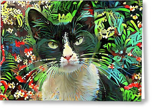 Tucker The Tuxedo Cat Greeting Card
