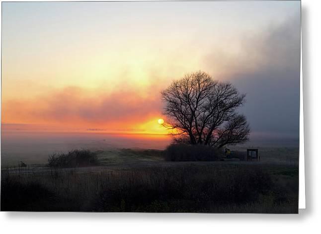 Tule Fog Sunrise  Greeting Card