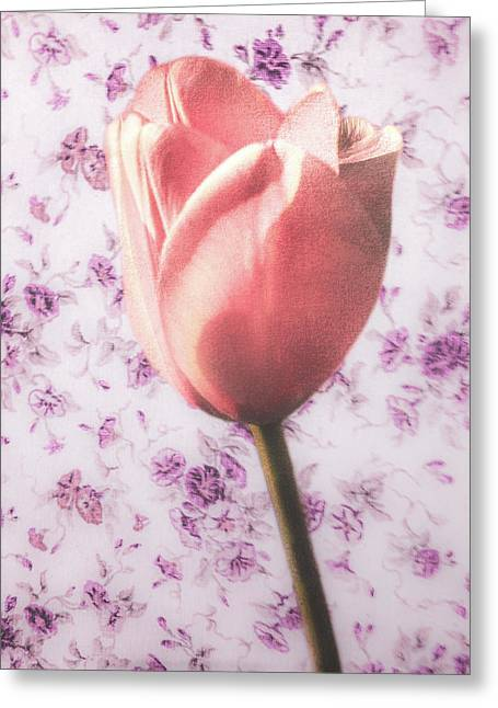 Greeting Card featuring the photograph Tulip Contrasted by Michael Arend