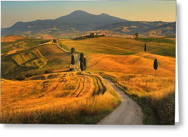 Tuscany, Cypress Road Greeting Card