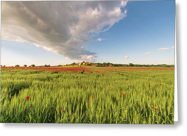 Greeting Card featuring the photograph Tuscany Wheat Field Dotted With Red Poppies by Mirko Chessari