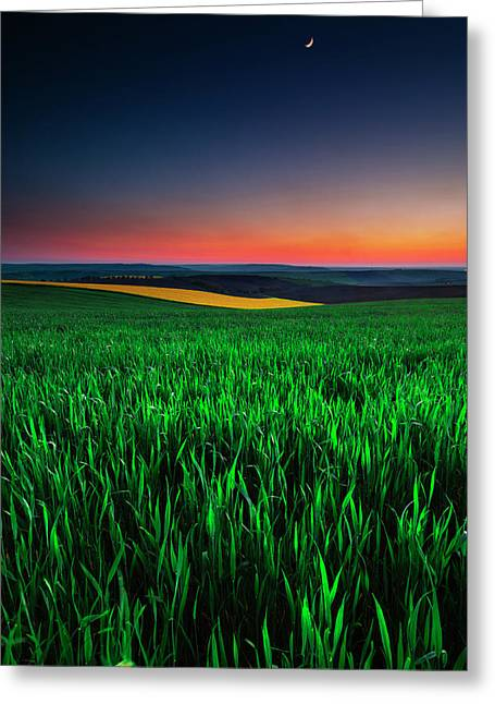 Twilight Fields Greeting Card