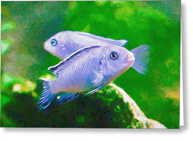 Greeting Card featuring the digital art Twin Blue Zebra Cichlids Pen by Don Northup