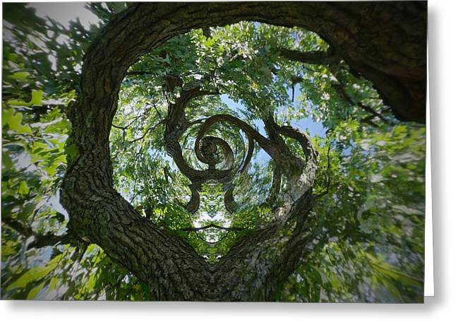 Twisted Tree Greeting Card