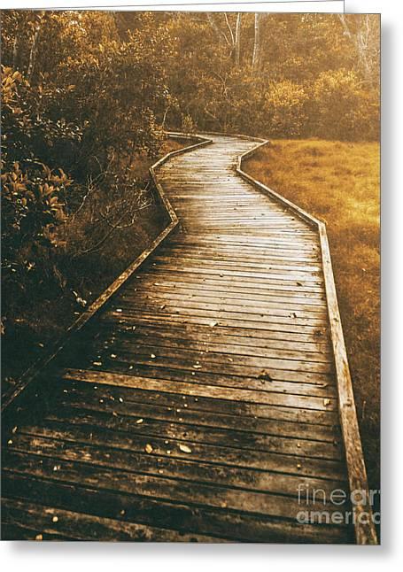 Twisting Trails Greeting Card