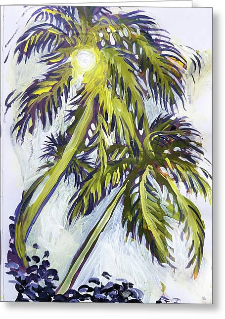 Two Palm Sketch Greeting Card