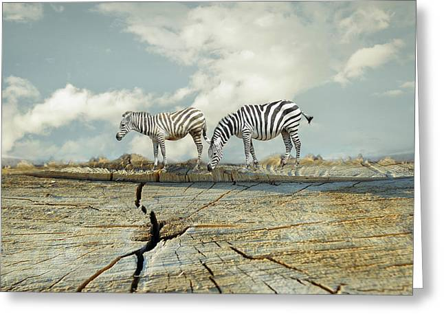 Two Zebras In A Surreal Landscape Greeting Card