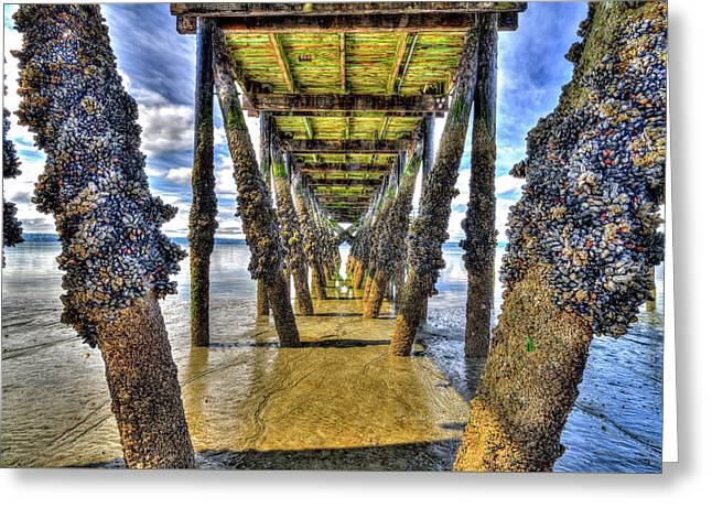 Under The Kayak Point Pier Greeting Card