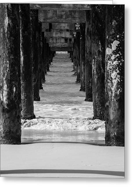 Under The Pier #2 Bw Greeting Card