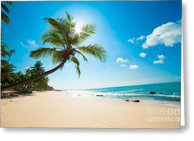 Untouched Tropical Beach In Sri Lanka Greeting Card