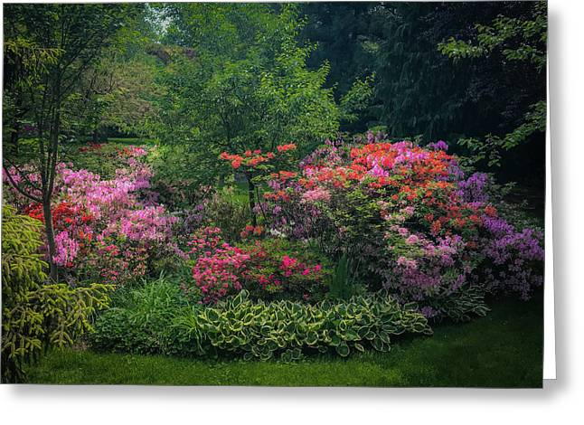 Urban Flower Garden Greeting Card