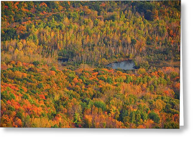 Greeting Card featuring the photograph Valley From The Summit Of Mount Greylock by Raymond Salani III