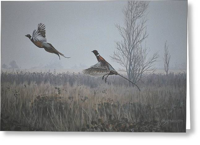 Valley Pheasants Greeting Card