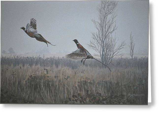 Valley Pheasants Greeting Card