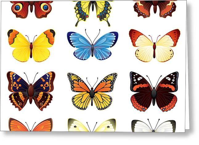 Vector Illustration - Butterfly Icon Set Greeting Card