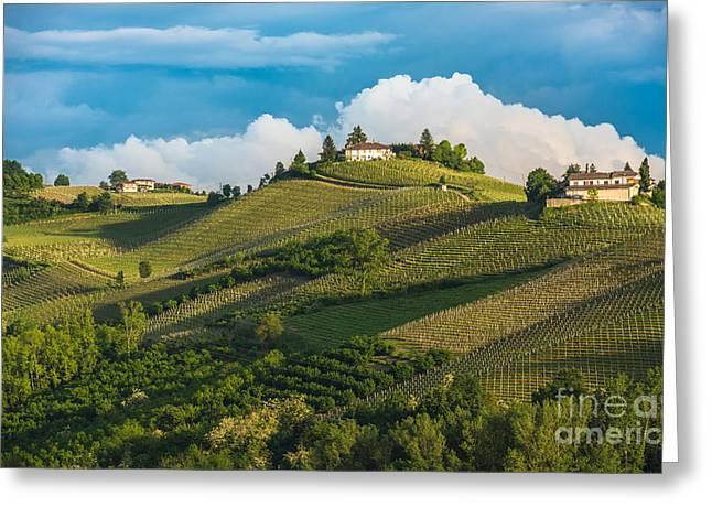 Vineyards Of Langhe, Piedmont, Unesco Greeting Card