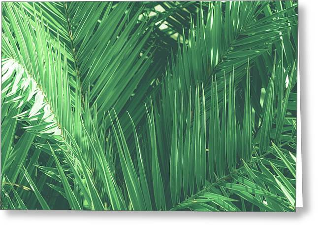 Vintage Palms I Greeting Card
