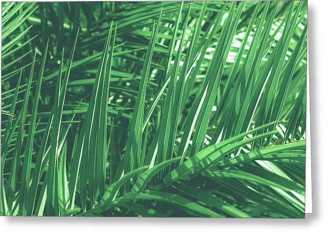 Vintage Palms V Greeting Card