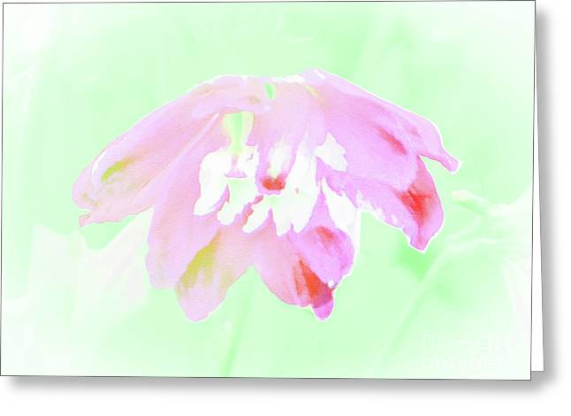 Violet Red Islamic Flora Greeting Card
