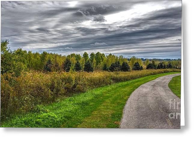 Walnut Woods Pathway - 2 Greeting Card