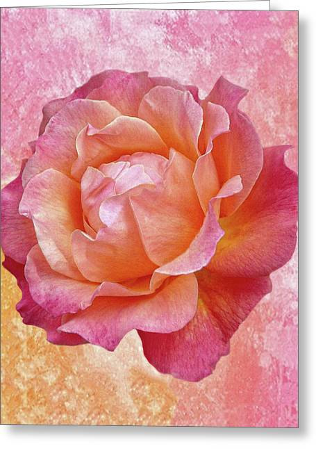 Warm And Crunchy Rose Greeting Card