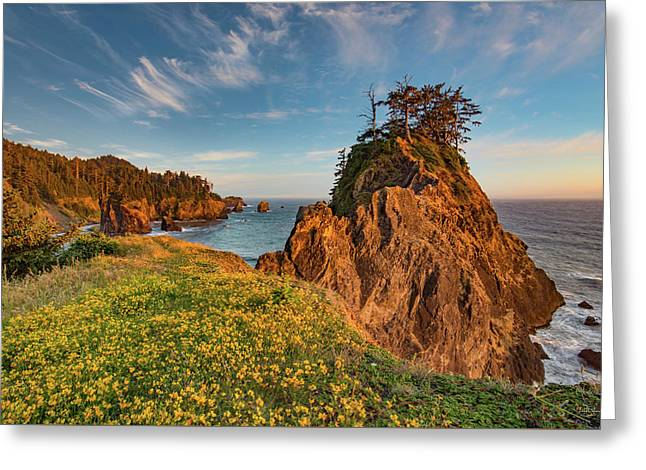 Warm And Peaceful Coast Greeting Card by Leland D Howard