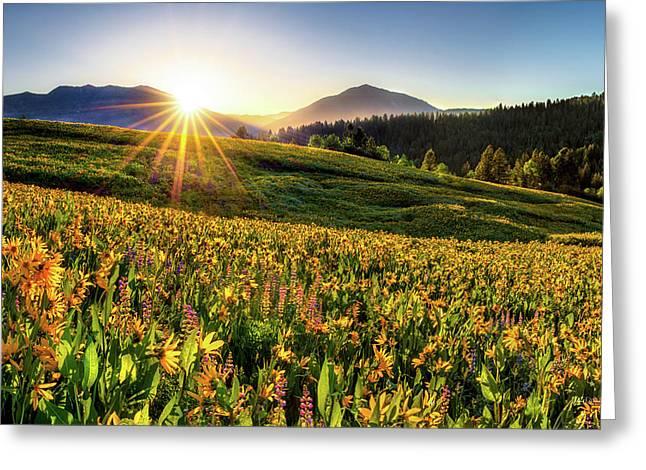 Warm Spring Sunrise 2 Greeting Card by Leland D Howard