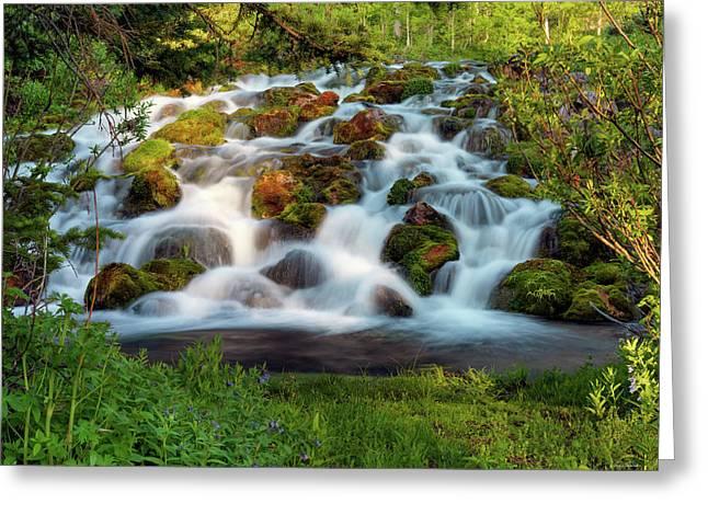 Wasatch Range Cascade Greeting Card by Leland D Howard