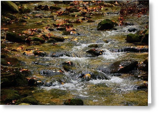 Greeting Card featuring the photograph Water Navigates The Rocks by Raymond Salani III