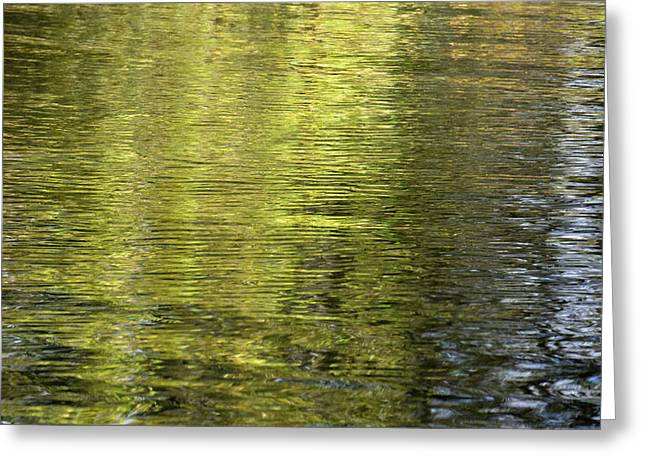 Water Reflection_521_17 Greeting Card