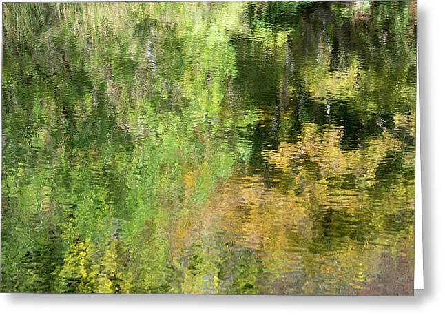 Water Reflection_598_17 Greeting Card