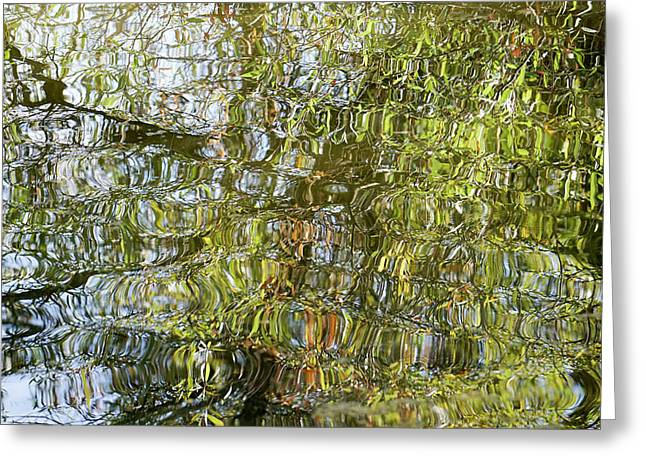 Water Reflection_65_17 Greeting Card