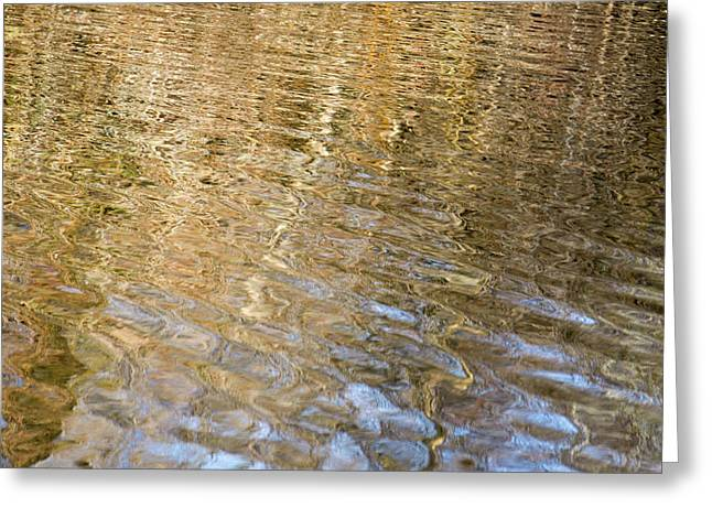 Water Reflection_751_18 Greeting Card