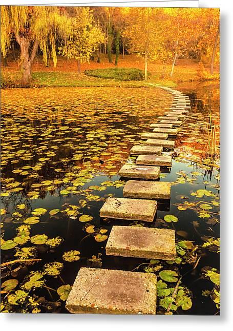 Way In The Lake Greeting Card