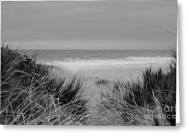 Greeting Card featuring the photograph Westport Red Filter by Jeni Gray
