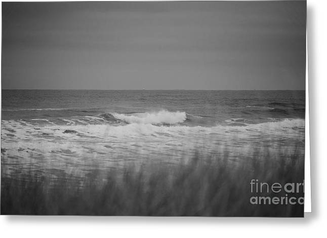 Greeting Card featuring the photograph Westport Waves by Jeni Gray